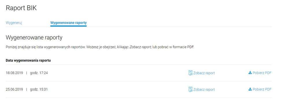 Raport BIK w pliku PDF